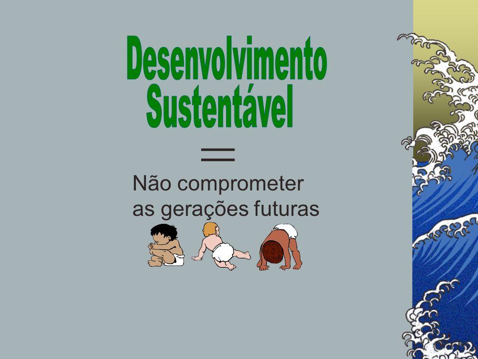 Desenvolvimento do conceito de DS: Principais eventos: Conferência de Estocolmo (1972) Trabalhos para o Clube de Roma (1972- 76) Relatório para o presidente Carter (1980) Relatório O Nosso Futuro Comum (1987) Relatório do Banco Mundial (1992) Acordos e conferências internacionais (anos 80 e 90)