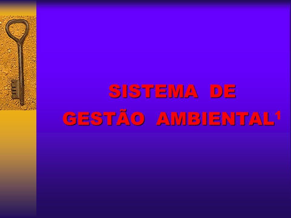 SISTEMA DE GESTÃO AMBIENTAL SISTEMA DE GESTÃO AMBIENTAL 1