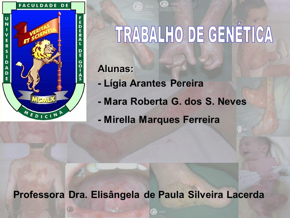 Alunas: - Lígia Arantes Pereira - Mara Roberta G. dos S. Neves - Mirella Marques Ferreira Professora Dra. Elisângela de Paula Silveira Lacerda