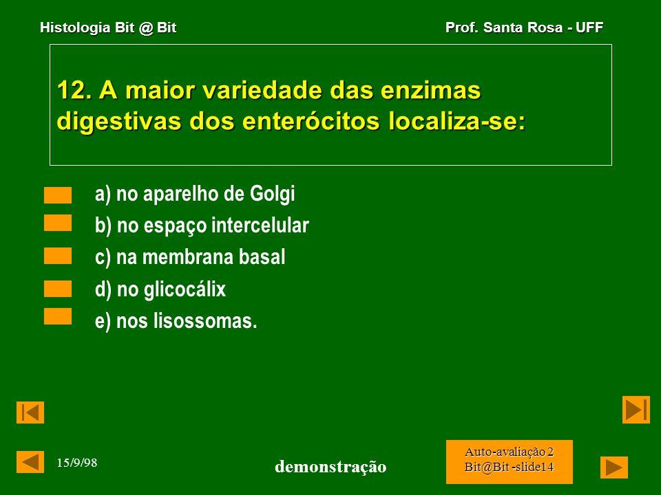 Histologia Bit @ Bit Prof. Santa Rosa - UFF 15/9/98 demonstração Auto-avaliação 2 Bit@Bit -slide13 11. Na figura abaixo são evidenciadas grandes célul