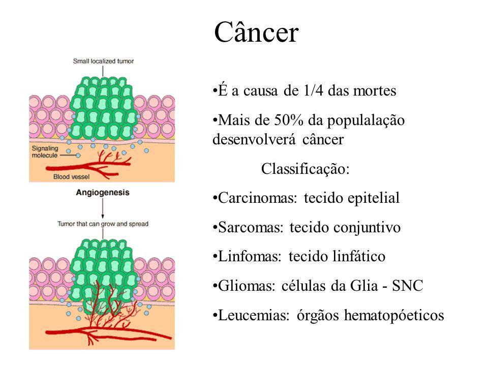 Câncer É a causa de 1/4 das mortes Mais de 50% da populalação desenvolverá câncer Classificação: Carcinomas: tecido epitelial Sarcomas: tecido conjunt