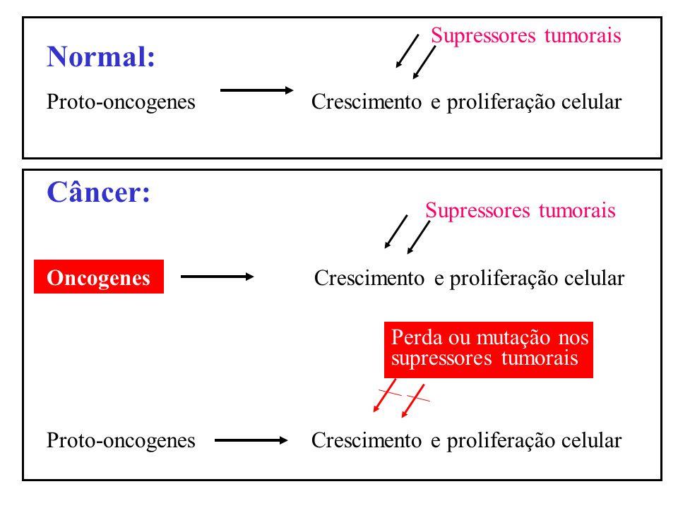Normal: Proto-oncogenes Crescimento e proliferação celular Câncer: Oncogenes Crescimento e proliferação celular Proto-oncogenes Crescimento e prolifer