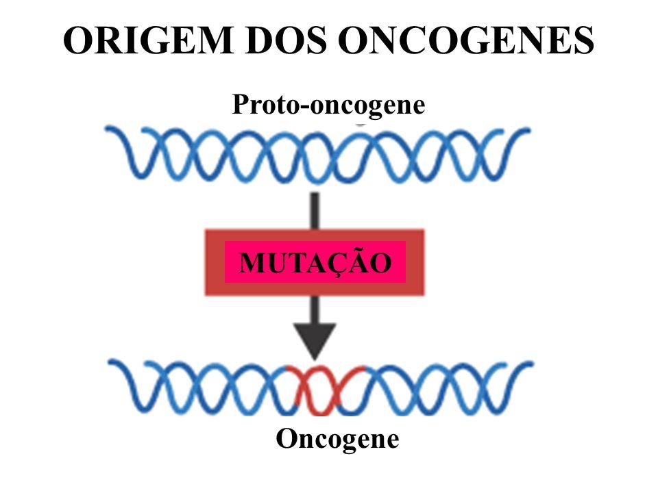 MUTAÇÃO Proto-oncogene Oncogene ORIGEM DOS ONCOGENES
