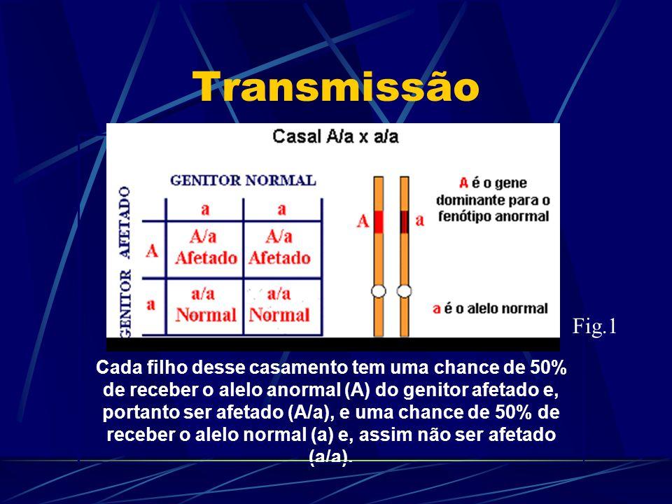 Transmissão Cada filho desse casamento tem uma chance de 50% de receber o alelo anormal (A) do genitor afetado e, portanto ser afetado (A/a), e uma ch