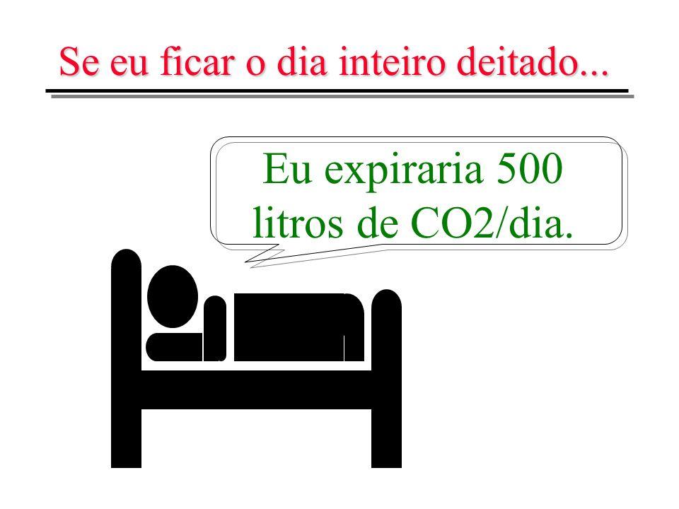 Se eu ficar o dia inteiro deitado... Eu expiraria 500 litros de CO2/dia.