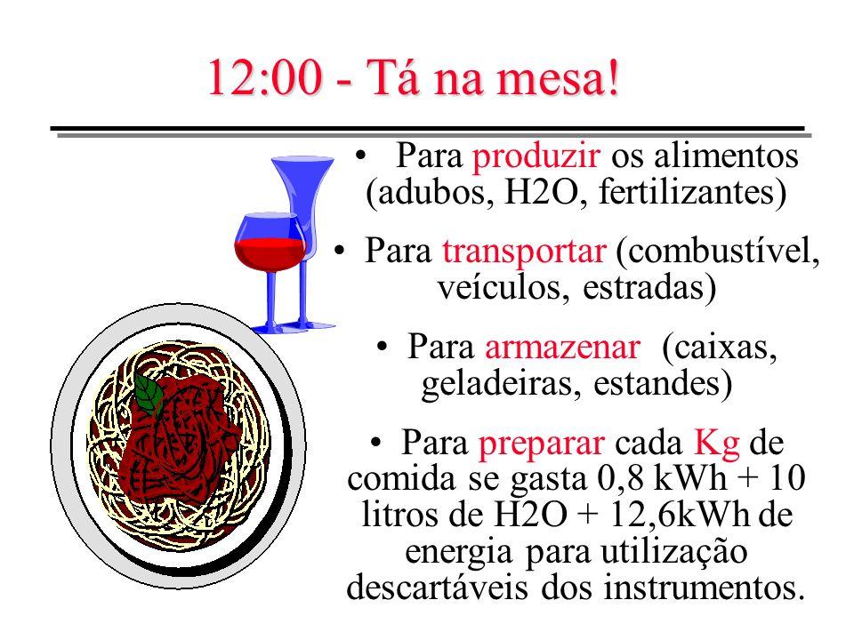 12:00 - Tá na mesa! Para produzir os alimentos (adubos, H2O, fertilizantes) Para transportar (combustível, veículos, estradas) Para armazenar (caixas,