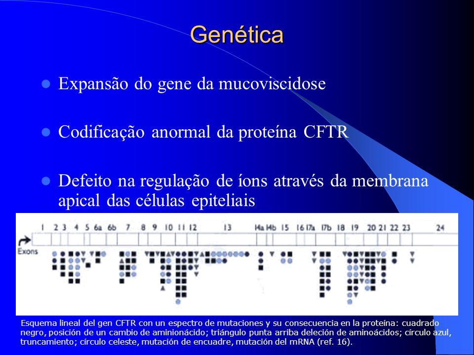Genética Expansão do gene da mucoviscidose Codificação anormal da proteína CFTR Defeito na regulação de íons através da membrana apical das células ep