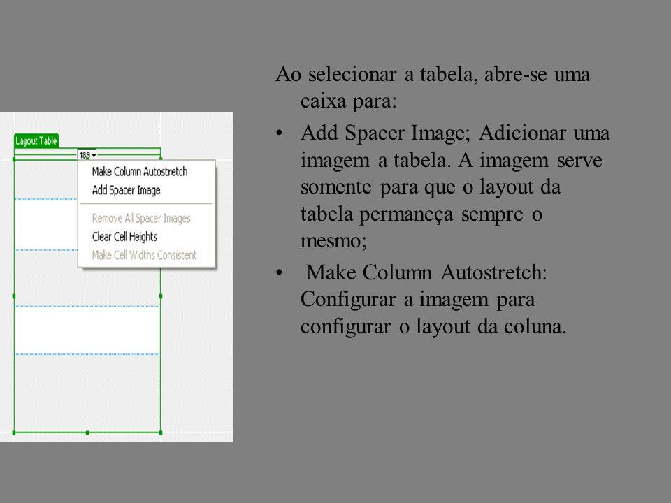 Ao selecionar a tabela, abre-se uma caixa para: Add Spacer Image; Adicionar uma imagem a tabela. A imagem serve somente para que o layout da tabela pe