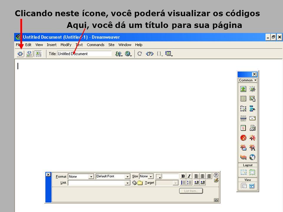 Clicando neste ícone, você poderá visualizar os códigos Aqui, você dá um título para sua página