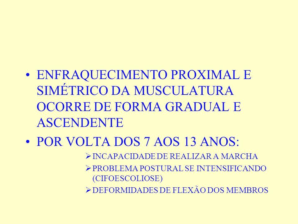 ENFRAQUECIMENTO PROXIMAL E SIMÉTRICO DA MUSCULATURA OCORRE DE FORMA GRADUAL E ASCENDENTE POR VOLTA DOS 7 AOS 13 ANOS: INCAPACIDADE DE REALIZAR A MARCH