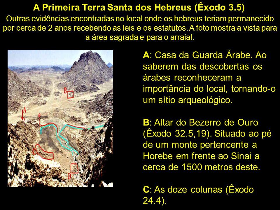 A foto de satélite abaixo mostra a diferença geográfica entre o tradicional Monte Sinai em AZUL (na península do Sinai), e o encontrado com evidências