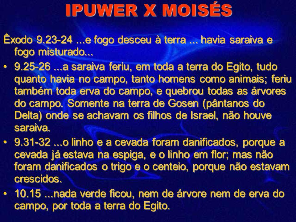IPUWER X MOISÉS Ipuwer 2.10 Certamente, portões, colunas e paredes são consumidos pelo fogo. 10.3-6 A casa real inteira está sem os seus servos. Ela t