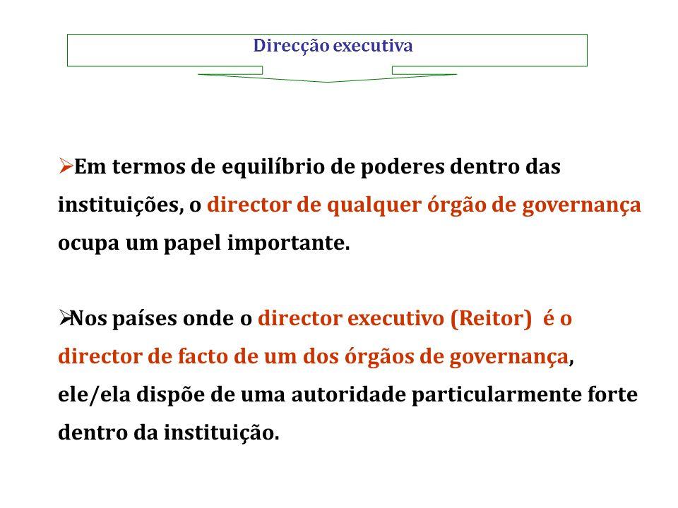 Direcção executiva Em termos de equilíbrio de poderes dentro das instituições, o director de qualquer órgão de governança ocupa um papel importante. N