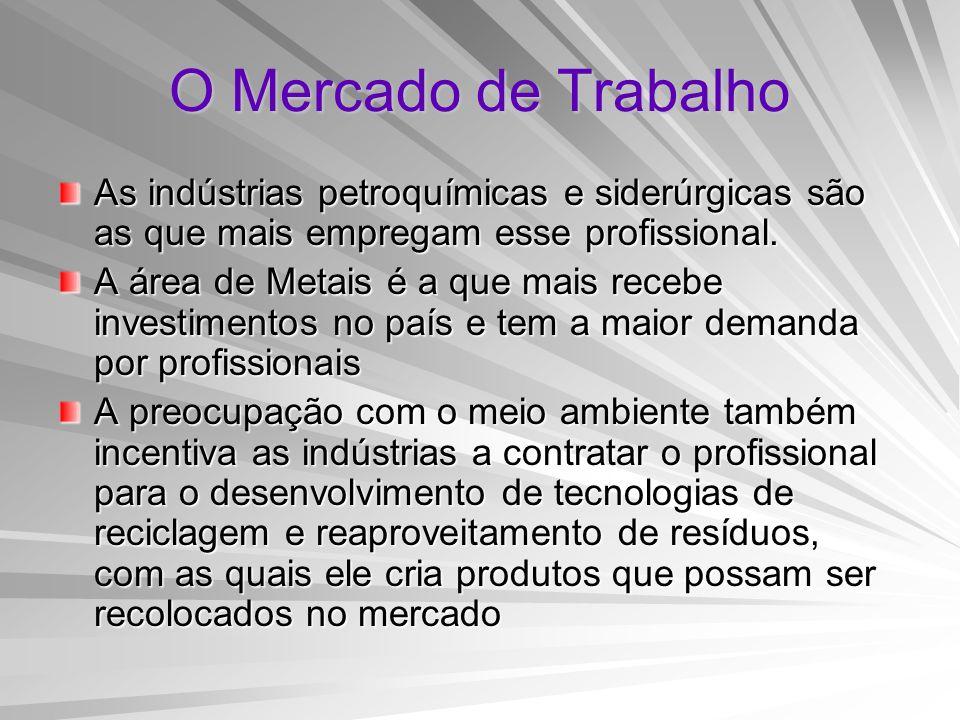 O Mercado de Trabalho As indústrias petroquímicas e siderúrgicas são as que mais empregam esse profissional. A área de Metais é a que mais recebe inve