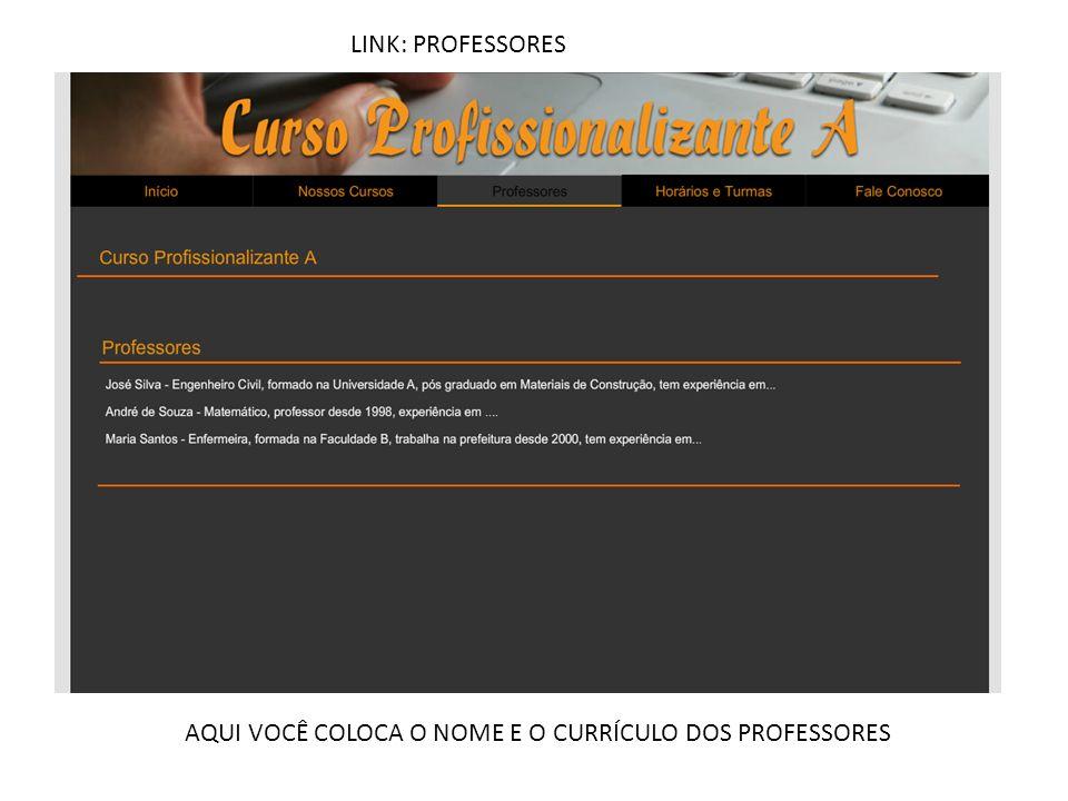 LINK: PROFESSORES AQUI VOCÊ COLOCA O NOME E O CURRÍCULO DOS PROFESSORES