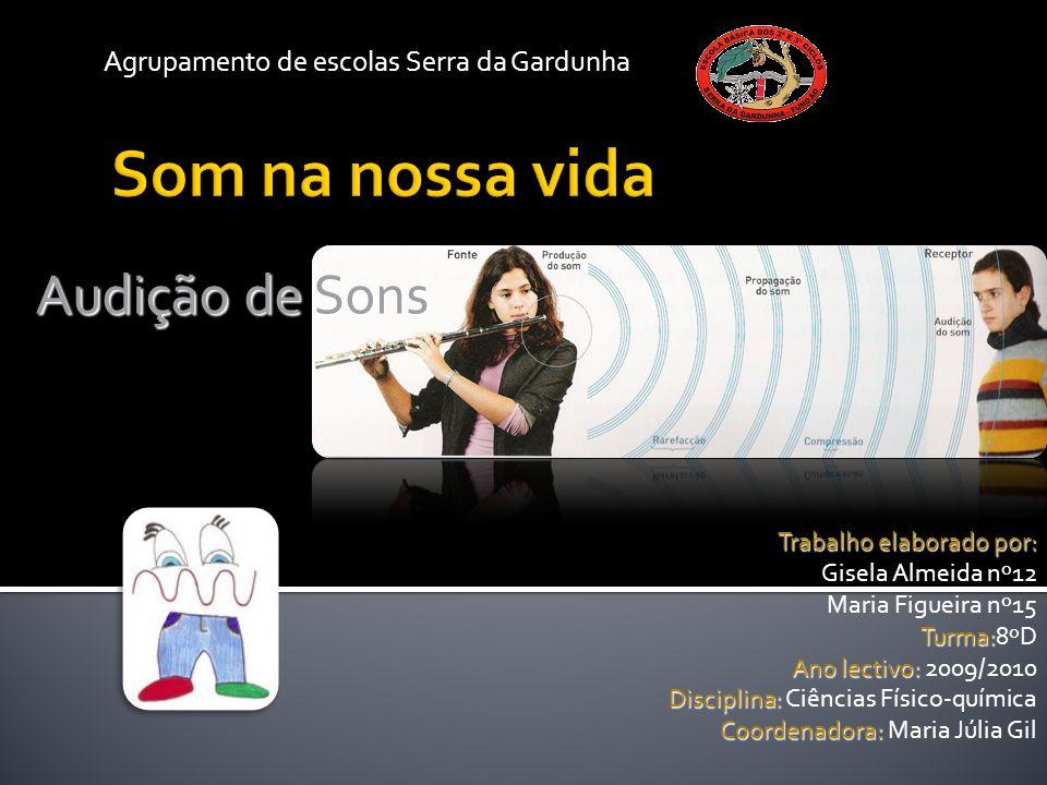 Agrupamento de escolas Serra da Gardunha Trabalho elaborado por: Gisela Almeida nº12 Maria Figueira nº15 Turma: Turma:8ºD Ano lectivo: Ano lectivo: 20