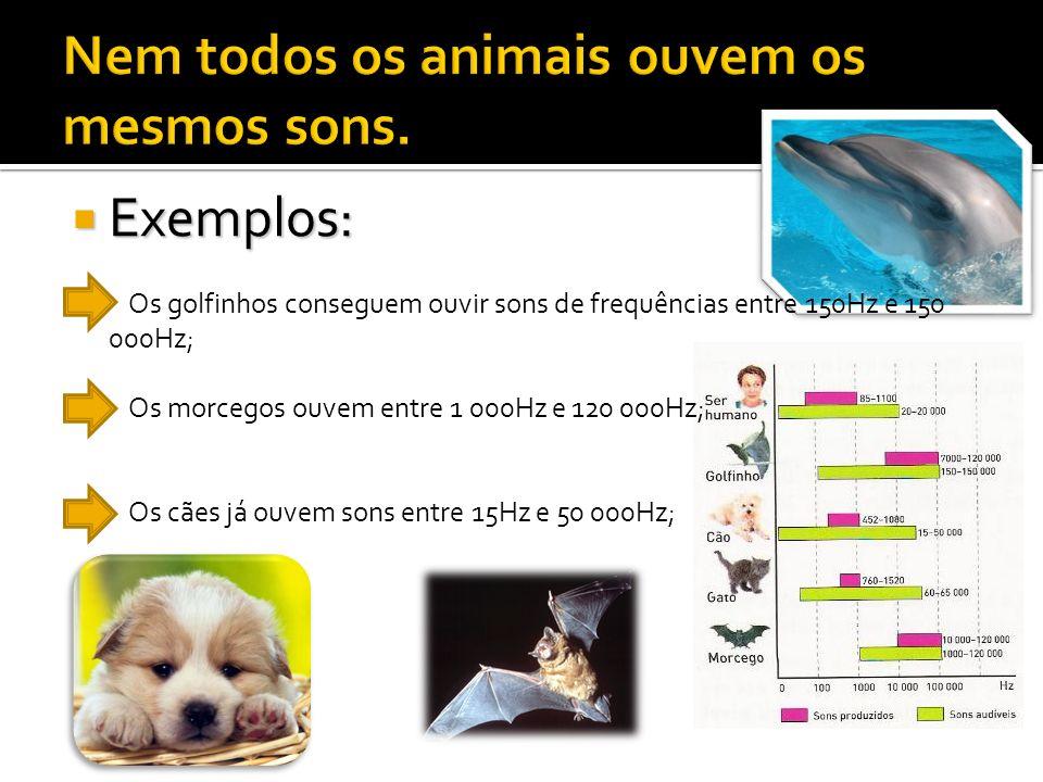 Exemplos: Exemplos: Os golfinhos conseguem ouvir sons de frequências entre 150Hz e 150 000Hz; Os morcegos ouvem entre 1 000Hz e 120 000Hz; Os cães já