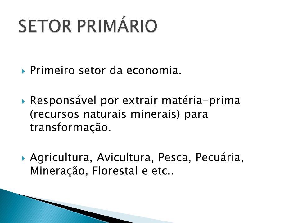 Primeiro setor da economia. Responsável por extrair matéria-prima (recursos naturais minerais) para transformação. Agricultura, Avicultura, Pesca, Pec