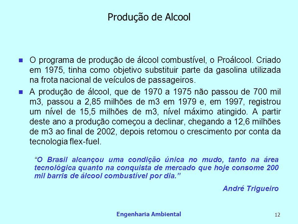 Engenharia Ambiental 12 Produção de Alcool O programa de produ ç ão de á lcool combust í vel, o Pro á lcool. Criado em 1975, tinha como objetivo subst