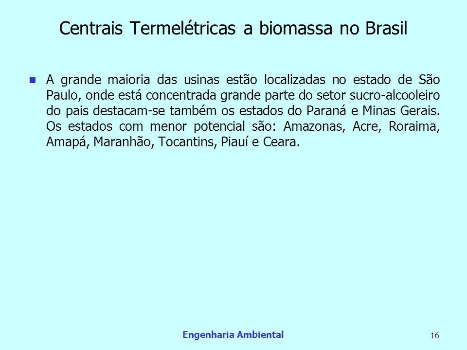 Engenharia Ambiental 16 Centrais Termelétricas a biomassa no Brasil A grande maioria das usinas estão localizadas no estado de São Paulo, onde está co