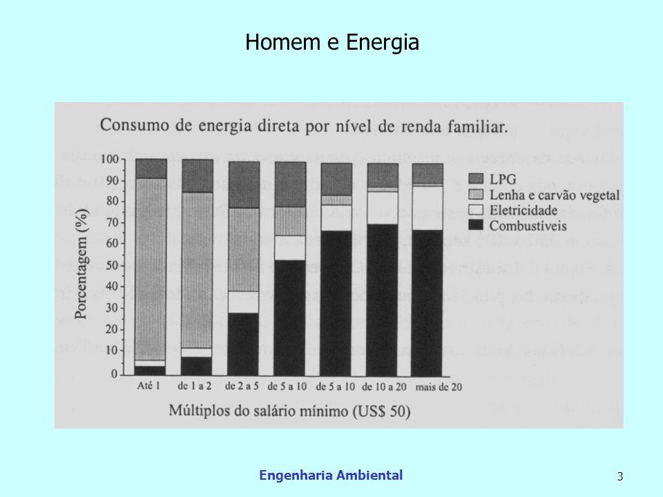 Engenharia Ambiental 14 Redução no consumo de lenha O processo de desenvolvimento das nações induz à redução natural do uso da lenha como fonte de energia.