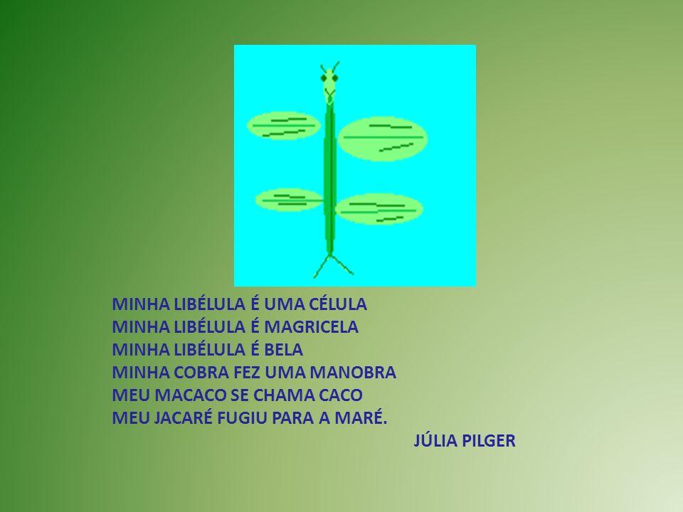 MINHA LIBÉLULA É UMA CÉLULA MINHA LIBÉLULA É MAGRICELA MINHA LIBÉLULA É BELA MINHA COBRA FEZ UMA MANOBRA MEU MACACO SE CHAMA CACO MEU JACARÉ FUGIU PAR