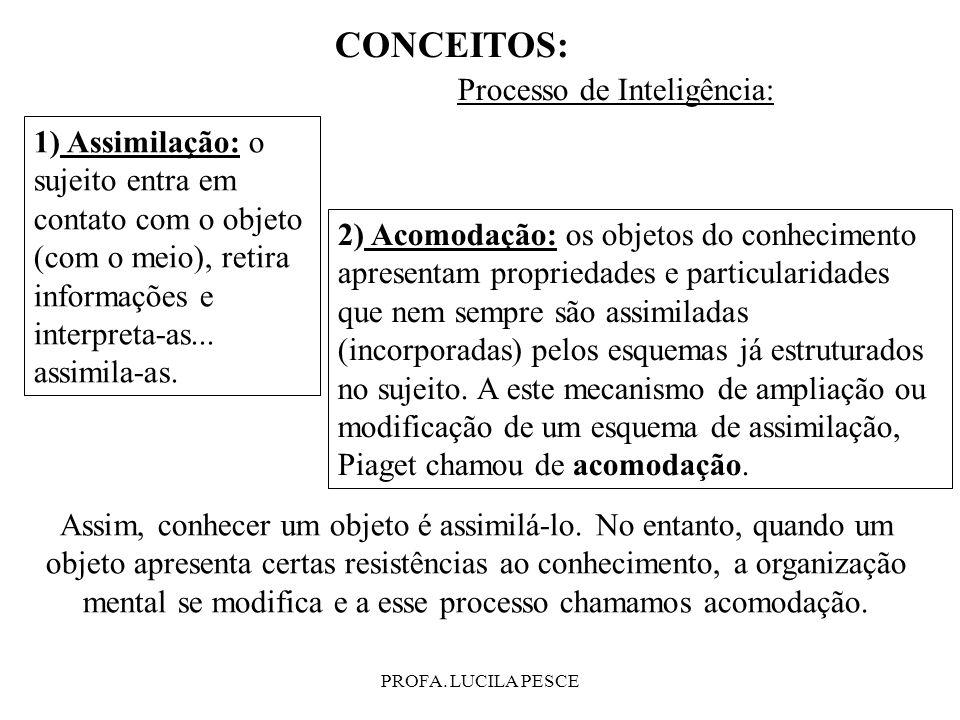 PROFA. LUCILA PESCE CONCEITOS: Processo de Inteligência: 1) Assimilação: o sujeito entra em contato com o objeto (com o meio), retira informações e in