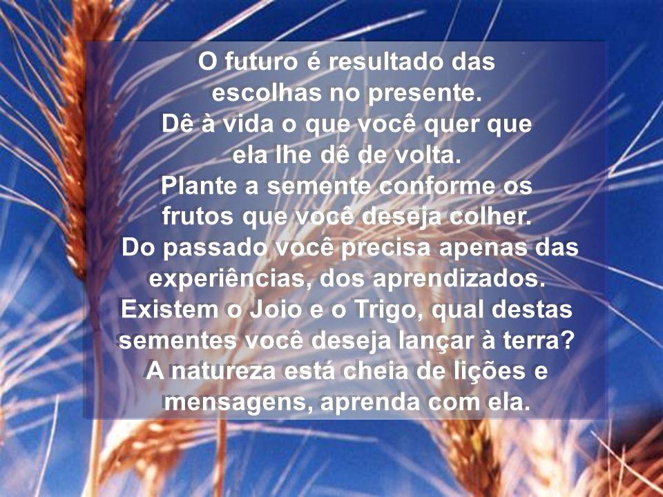 O futuro é resultado das escolhas no presente. Dê à vida o que você quer que ela lhe dê de volta. Plante a semente conforme os frutos que você deseja