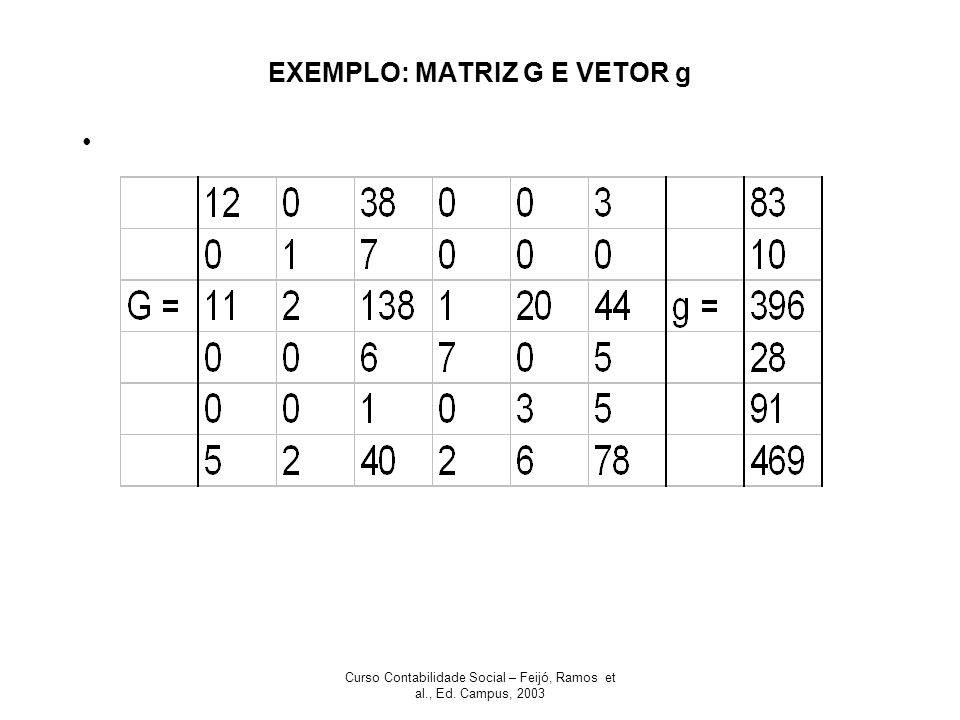 Curso Contabilidade Social – Feijó, Ramos et al., Ed. Campus, 2003 EXEMPLO: MATRIZ G E VETOR g