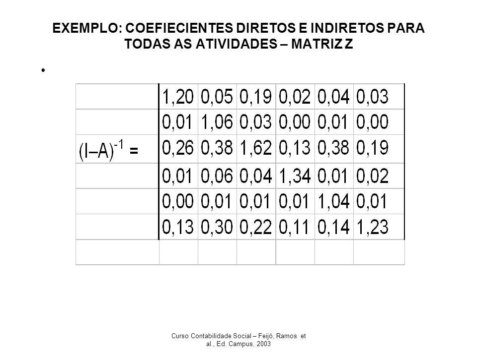 Curso Contabilidade Social – Feijó, Ramos et al., Ed. Campus, 2003 EXEMPLO: COEFIECIENTES DIRETOS E INDIRETOS PARA TODAS AS ATIVIDADES – MATRIZ Z