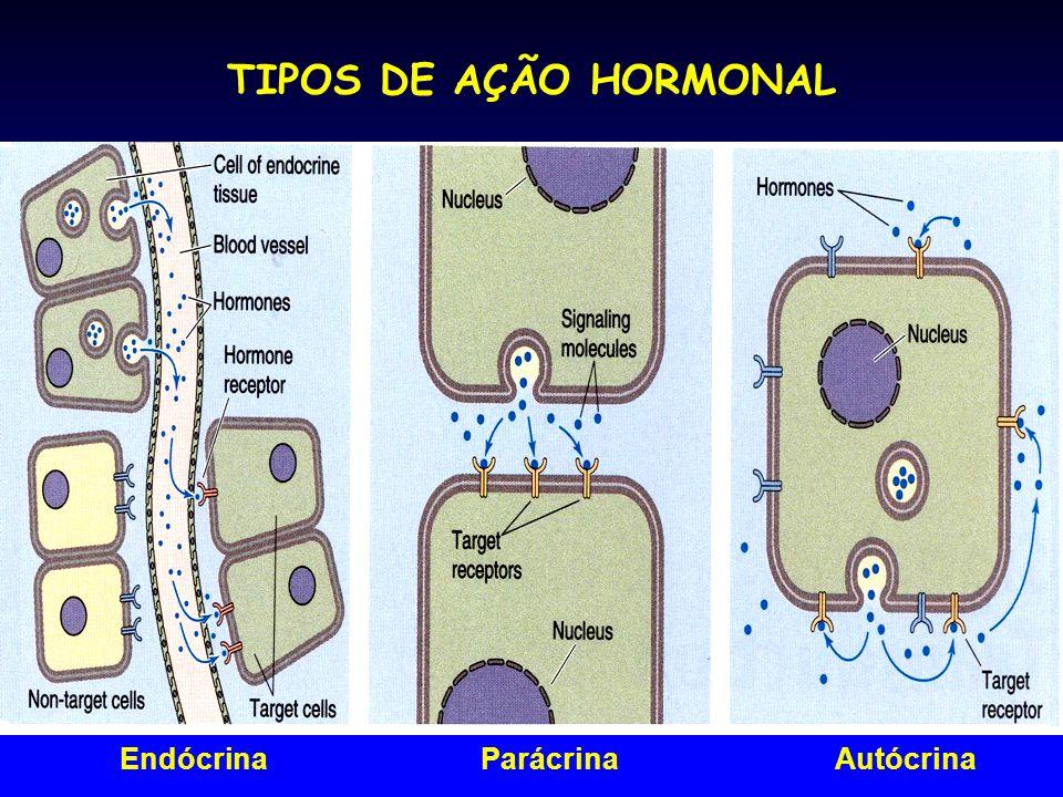 TIPOS DE AÇÃO HORMONAL EndócrinaParácrinaAutócrina