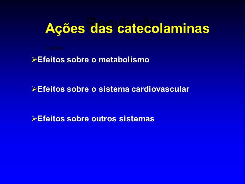 Regulação Córtex Ações das catecolaminas Efeitos sobre o metabolismo Efeitos sobre o sistema cardiovascular Efeitos sobre outros sistemas