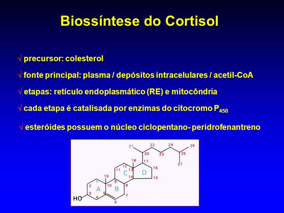 Biossíntese do Cortisol precursor: colesterol fonte principal: plasma / depósitos intracelulares / acetil-CoA etapas: retículo endoplasmático (RE) e m