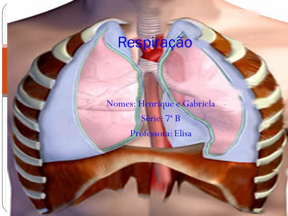 Nomes: Henrique e Gabriela Série: 7ª B Professora: Elisa Respiração