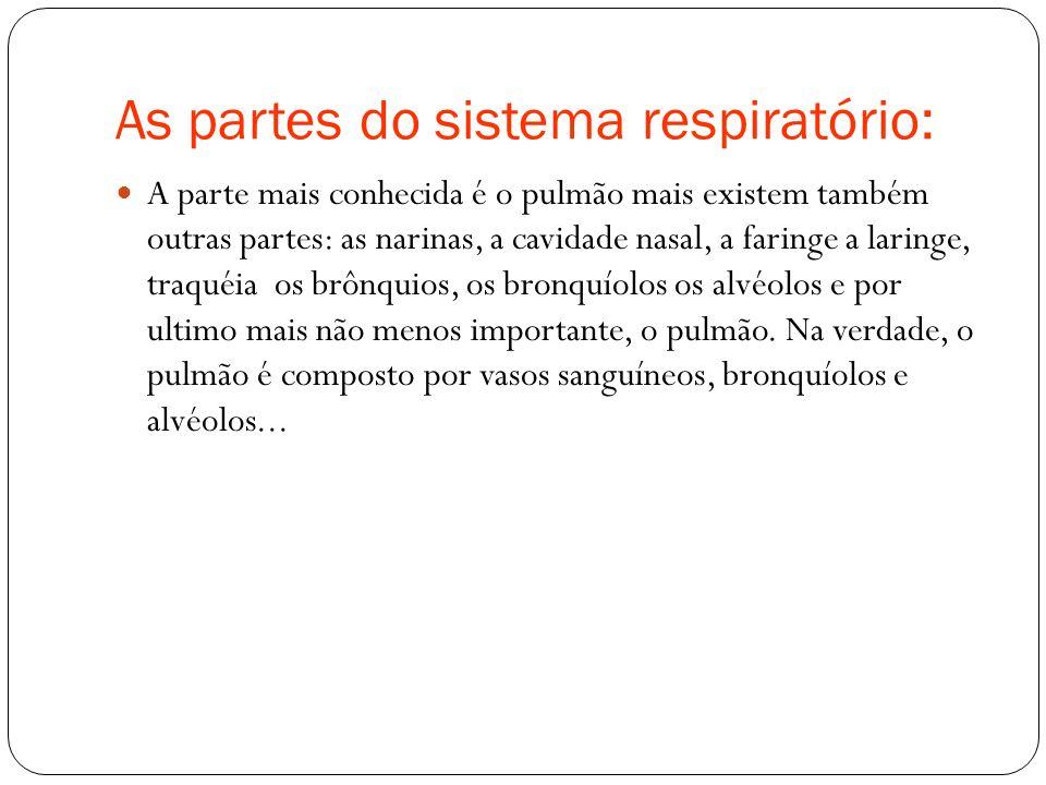 As partes do sistema respiratório: A parte mais conhecida é o pulmão mais existem também outras partes: as narinas, a cavidade nasal, a faringe a lari