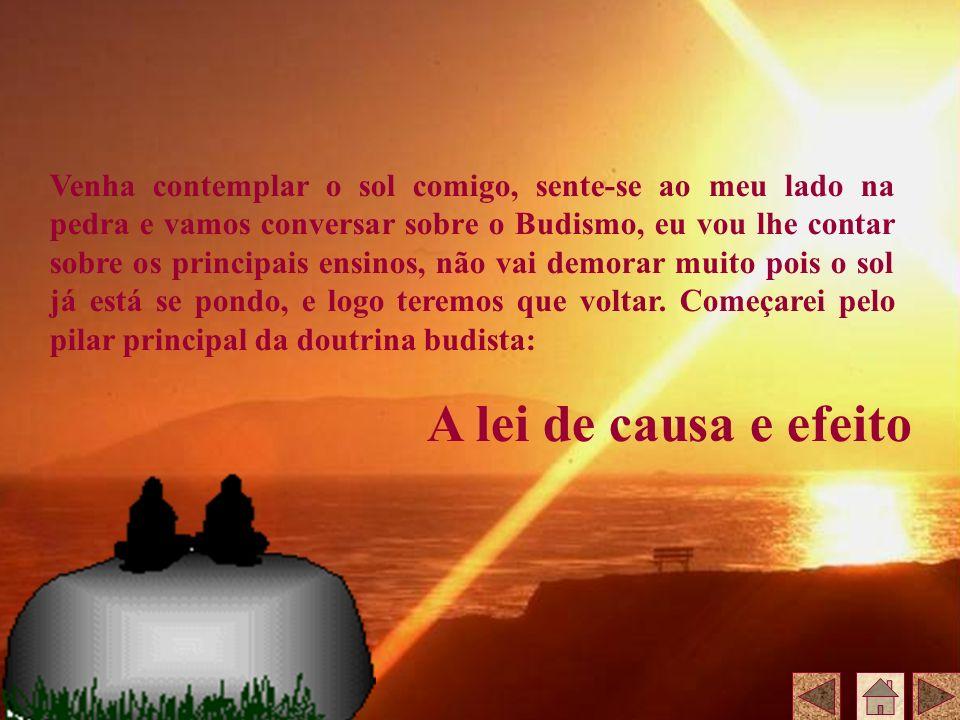 Venha contemplar o sol comigo, sente-se ao meu lado na pedra e vamos conversar sobre o Budismo, eu vou lhe contar sobre os principais ensinos, não vai