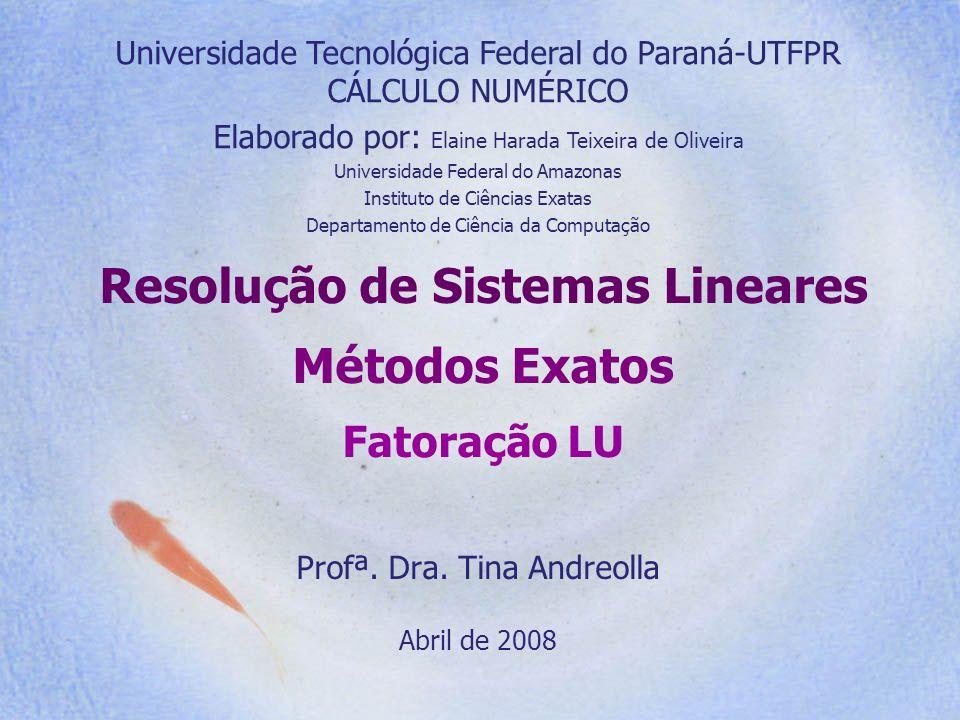 Resolução de Sistemas Lineares Métodos Exatos Fatoração LU Profª. Dra. Tina Andreolla Abril de 2008 Universidade Tecnológica Federal do Paraná-UTFPR C
