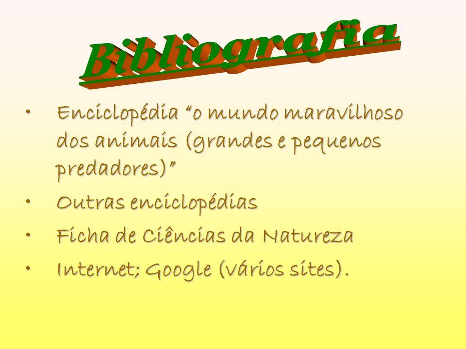 Enciclopédia o mundo maravilhoso dos animais (grandes e pequenos predadores)Enciclopédia o mundo maravilhoso dos animais (grandes e pequenos predadore
