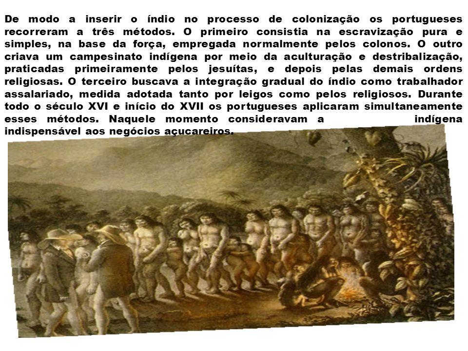 A sociedade da região açucareira dos séculos XVI e XVII era composta, basicamente, por dois grupos.