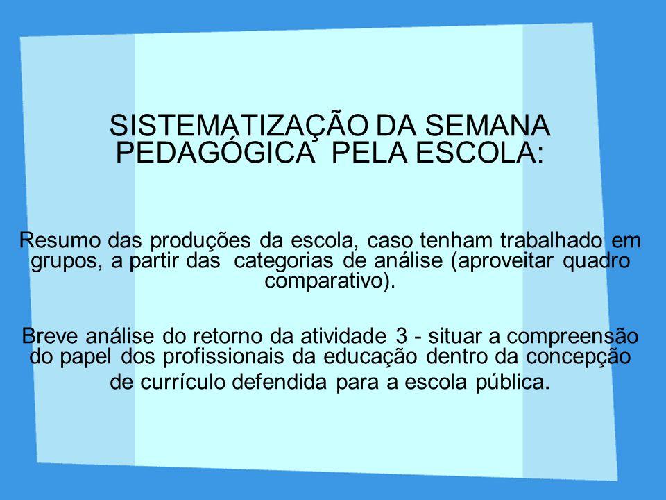 SISTEMATIZAÇÃO DA SEMANA PEDAGÓGICA PELA ESCOLA: Resumo das produções da escola, caso tenham trabalhado em grupos, a partir das categorias de análise