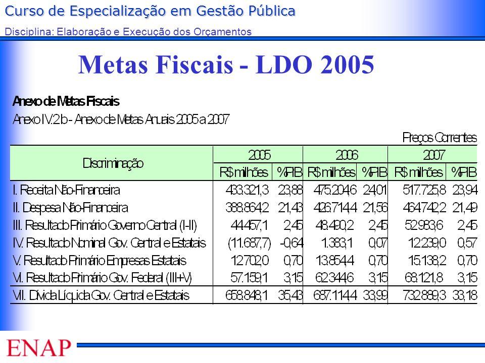 Curso de Especialização em Gestão Pública Disciplina: Elaboração e Execução dos Orçamentos Metas Fiscais - LDO 2005