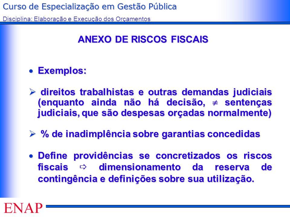 Curso de Especialização em Gestão Pública Disciplina: Elaboração e Execução dos Orçamentos ANEXO DE RISCOS FISCAIS ANEXO DE RISCOS FISCAIS Exemplos: E
