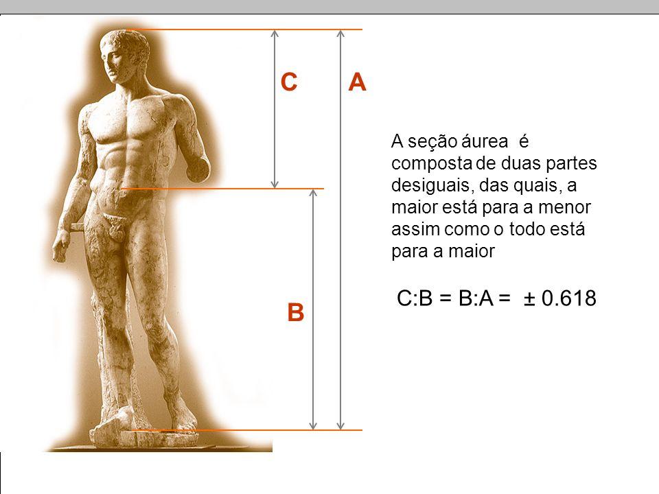 CA B A seção áurea é composta de duas partes desiguais, das quais, a maior está para a menor assim como o todo está para a maior C:B = B:A = ± 0.618