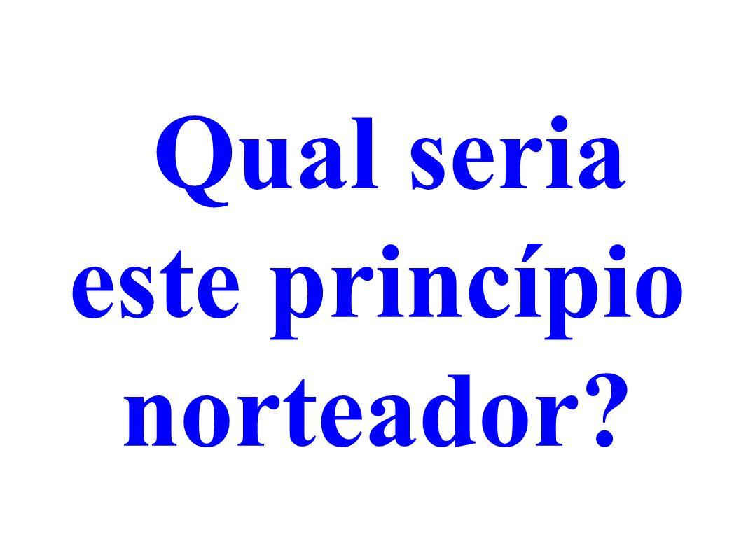 Qual seria este princípio norteador?