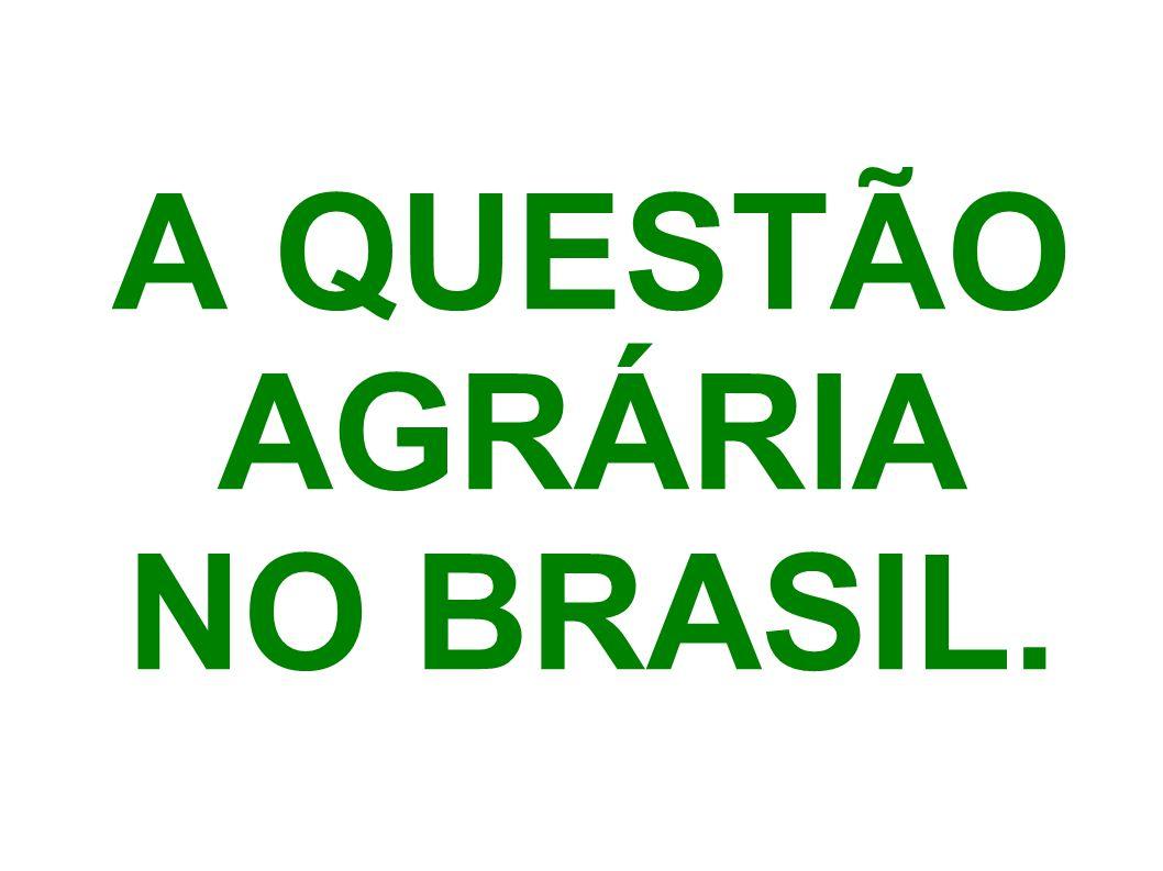 A QUESTÃO AGRÁRIA NO BRASIL.