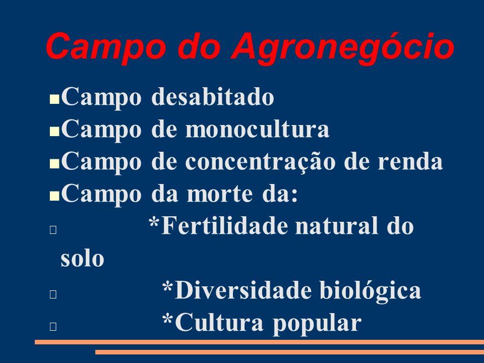 Campo do Agronegócio Campo desabitado Campo de monocultura Campo de concentração de renda Campo da morte da: *Fertilidade natural do solo *Diversidade biológica *Cultura popular