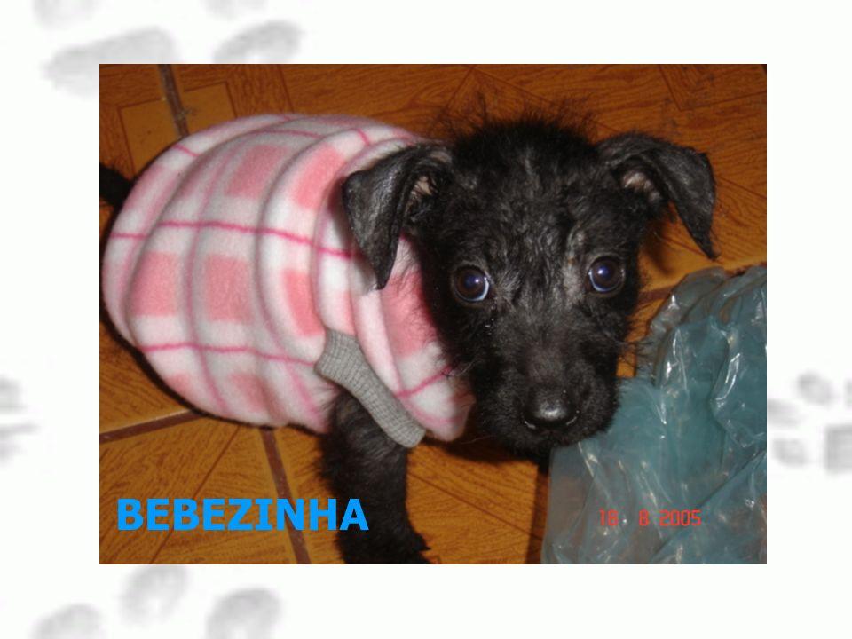 BEBEZINHA