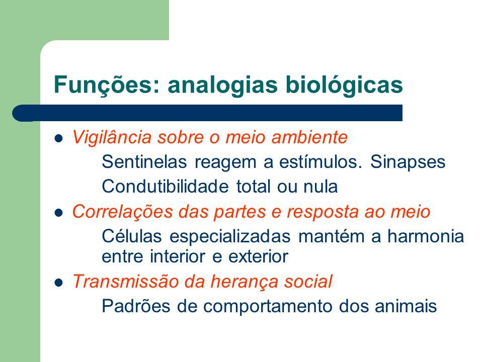Funções: analogias biológicas Vigilância sobre o meio ambiente Sentinelas reagem a estímulos. Sinapses Condutibilidade total ou nula Correlações das p