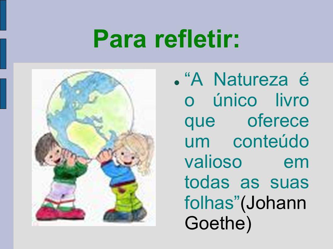 Para refletir: A Natureza é o único livro que oferece um conteúdo valioso em todas as suas folhas(Johann Goethe)
