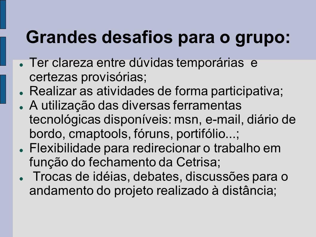 Grandes desafios para o grupo: Ter clareza entre dúvidas temporárias e certezas provisórias; Realizar as atividades de forma participativa; A utilizaç